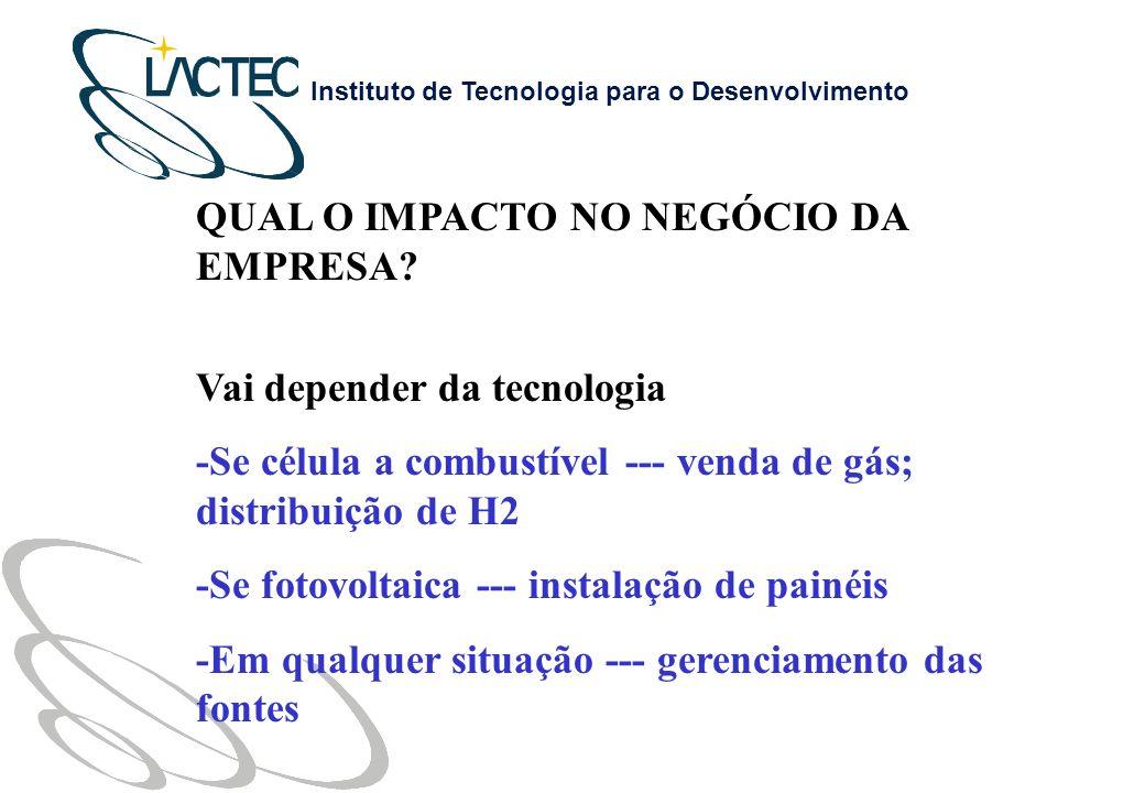 Instituto de Tecnologia para o Desenvolvimento QUAL O IMPACTO NO NEGÓCIO DA EMPRESA.