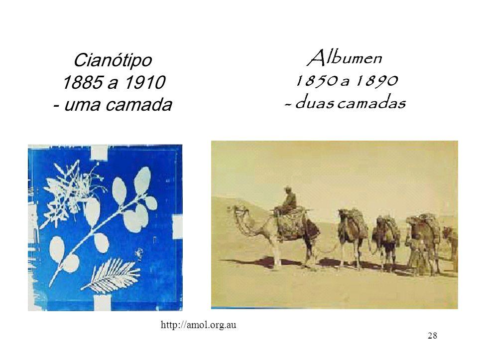 28 Albumen 1850 a 1890 - duas camadas Cianótipo 1885 a 1910 - uma camada http://amol.org.au