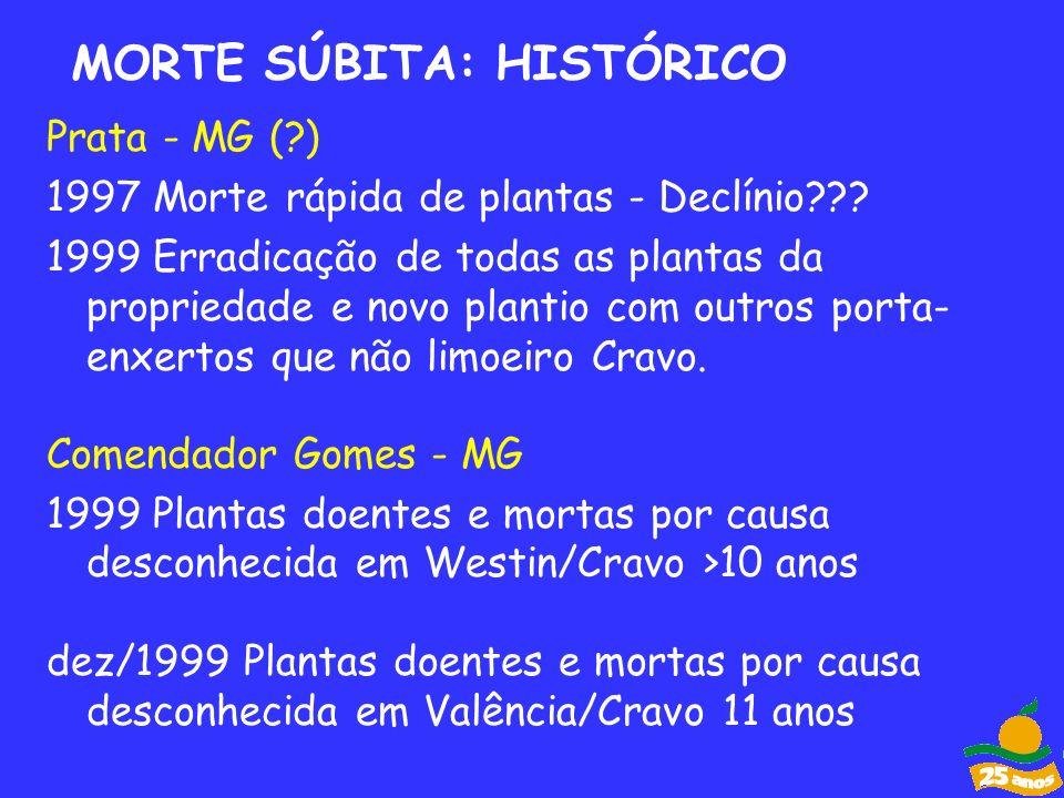 Prata - MG (?) 1997 Morte rápida de plantas - Declínio??? 1999 Erradicação de todas as plantas da propriedade e novo plantio com outros porta- enxerto