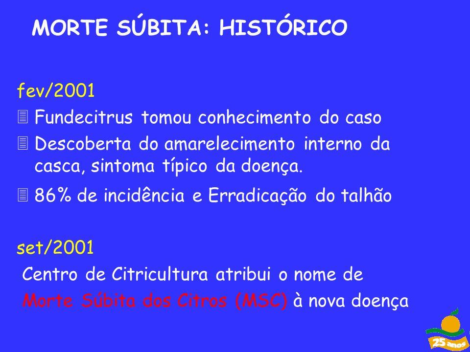 fev/2001 3Fundecitrus tomou conhecimento do caso Descoberta do amarelecimento interno da casca, sintoma típico da doença. 86% de incidência e Erradica