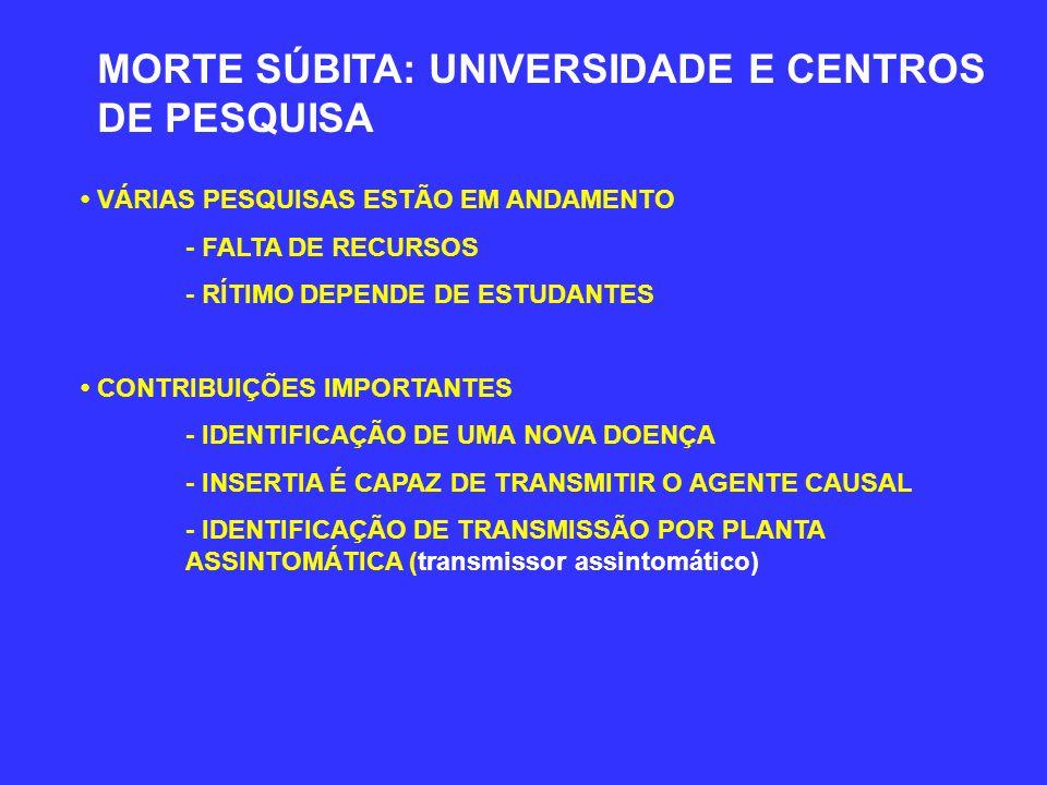 MORTE SÚBITA: UNIVERSIDADE E CENTROS DE PESQUISA VÁRIAS PESQUISAS ESTÃO EM ANDAMENTO - FALTA DE RECURSOS - RÍTIMO DEPENDE DE ESTUDANTES CONTRIBUIÇÕES IMPORTANTES - IDENTIFICAÇÃO DE UMA NOVA DOENÇA - INSERTIA É CAPAZ DE TRANSMITIR O AGENTE CAUSAL - IDENTIFICAÇÃO DE TRANSMISSÃO POR PLANTA ASSINTOMÁTICA (transmissor assintomático)