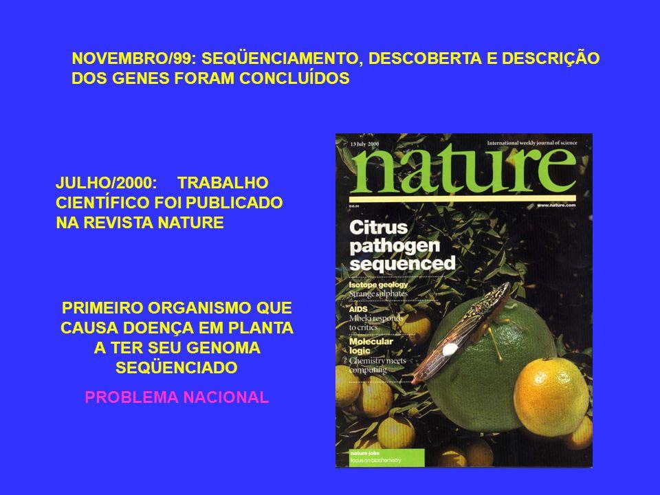NOVEMBRO/99: SEQÜENCIAMENTO, DESCOBERTA E DESCRIÇÃO DOS GENES FORAM CONCLUÍDOS JULHO/2000: TRABALHO CIENTÍFICO FOI PUBLICADO NA REVISTA NATURE PRIMEIRO ORGANISMO QUE CAUSA DOENÇA EM PLANTA A TER SEU GENOMA SEQÜENCIADO PROBLEMA NACIONAL