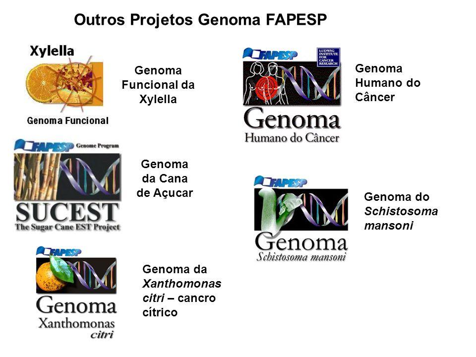 Genomas Agronômicos e Ambientais (AEG) Xylella fastidiosa QUE CAUSA DOENÇA EM VIDEIRA (FAPESP+USDA) GENOMA EXPRESSO DO CAFÉ (CONSÓRCIO FAPESP+EMBRAPA) GENOMA EXPRESSO DO EUCALIPTO (PROGRAMA PARCERIA PARA INOVAÇÃO TECNOLÓGICA COM EMPRESAS DE CELULOSE E PAPEL) GENOMA DA BACTÉRIA Leifsonia xyli, QUE ATACA CANA-DE- ACUÇAR GENOMA EXPRESSO DO BOI (PROGRAMA PARCERIA PARA INOVAÇÃO TECNOLÓGICA)