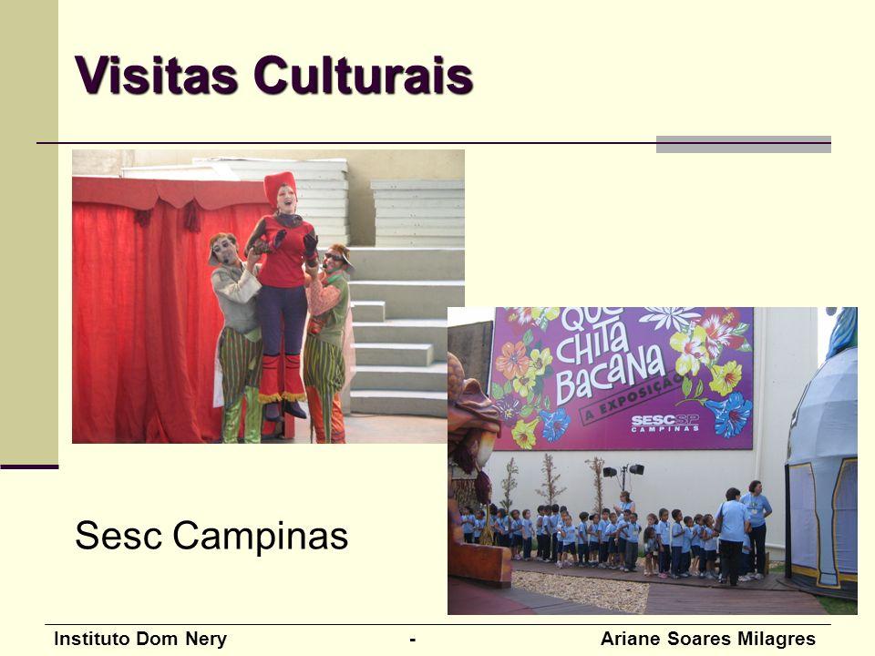 Instituto Dom Nery - Ariane Soares Milagres Sesc Campinas Visitas Culturais