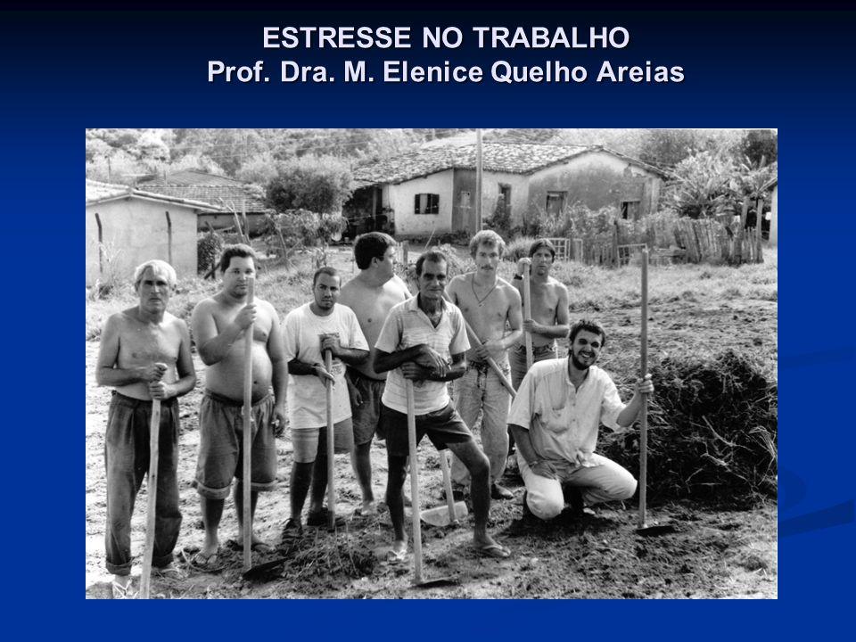 ESTRESSE NO TRABALHO Prof. Dra. M. Elenice Quelho Areias