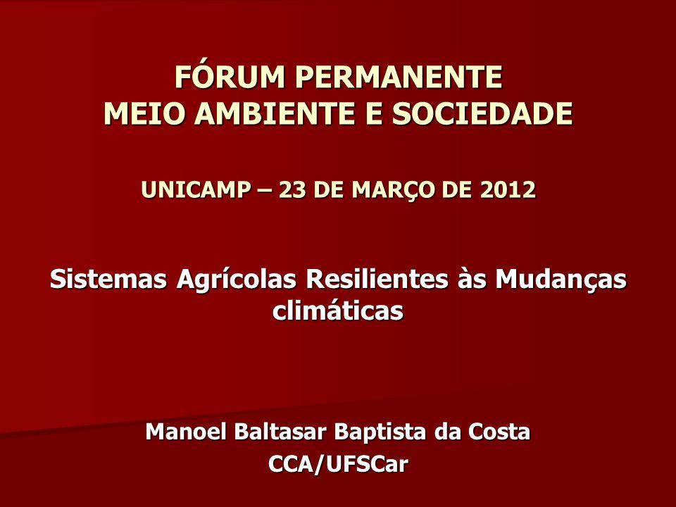 AGRICULTURA BRASILEIRA – GEE A agricultura brasileira é responsável por 77% dos GEE gerados pelo país – –Fermentação entérica dos ruminantes – –Emissões de N2O pelos fertilizantes nitrogenados – –Mudanças do uso da terra e queimadas