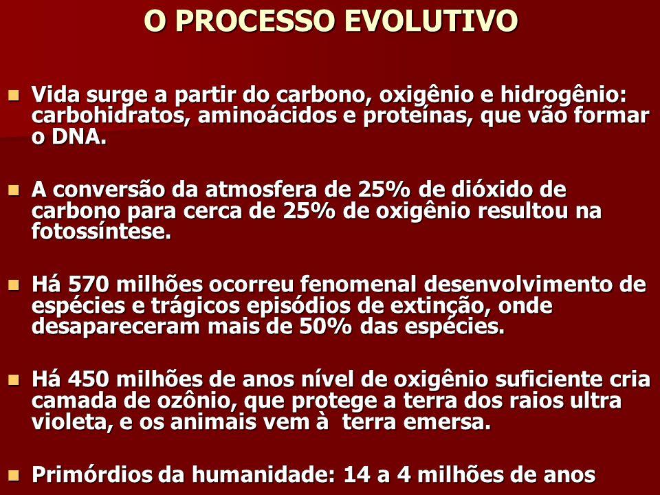 BIBLIOGRAFIA IPCC – Intergovernmental Panel on Climate Change MASERA, O.; ASTIER, M.; LOPEZ-RIDUARA, S.