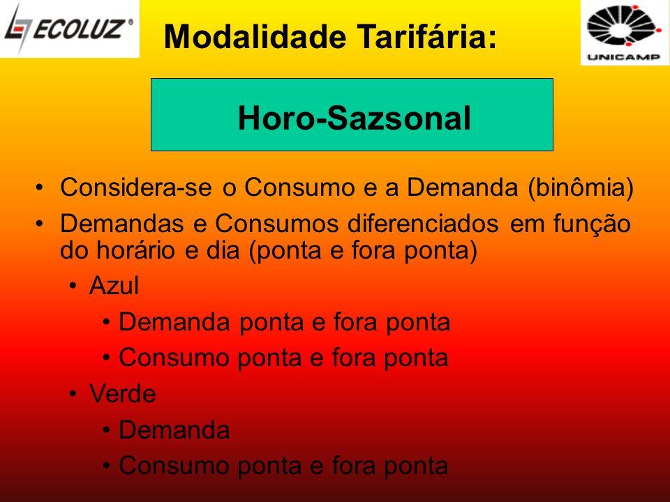 Modalidade Tarifária: Considera-se o Consumo e a Demanda (binômia) Demandas e Consumos diferenciados em função do horário e dia (ponta e fora ponta) A