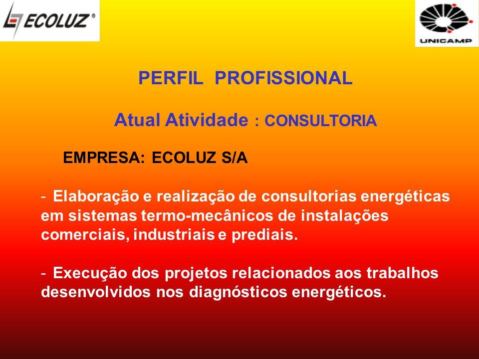 PERFIL PROFISSIONAL Atual Atividade : CONSULTORIA EMPRESA: ECOLUZ S/A -Elaboração e realização de consultorias energéticas em sistemas termo-mecânicos