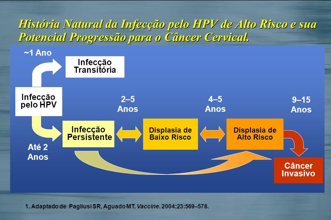 História Natural da Infecção pelo HPV de Alto Risco e sua Potencial Progressão para o Câncer Cervical. ~1 Ano 2–5 Anos 4–5 Anos Câncer Invasivo Infecç