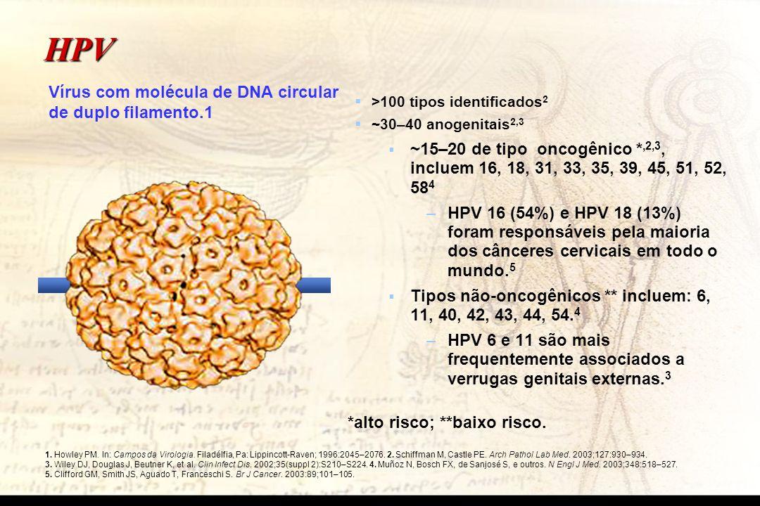 HPV >100 tipos identificados 2 ~30–40 anogenitais 2,3 ~15–20 de tipo oncogênico *,2,3, incluem 16, 18, 31, 33, 35, 39, 45, 51, 52, 58 4 – –HPV 16 (54%