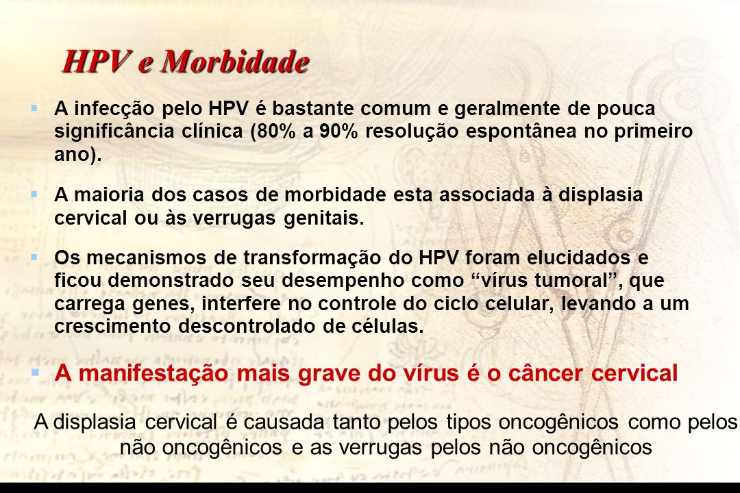 HPV e Morbidade A infecção pelo HPV é bastante comum e geralmente de pouca significância clínica (80% a 90% resolução espontânea no primeiro ano). A m