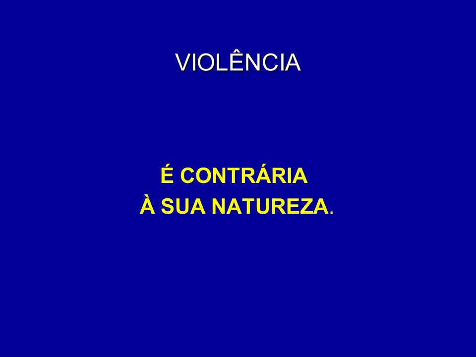 VIOLÊNCIA FATO MORALMENTE CONSTRANGEDOR LEFEVRE (1992)