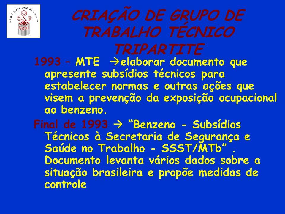 CRIAÇÃO DE GRUPO DE TRABALHO TÉCNICO TRIPARTITE 1993 – MTE elaborar documento que apresente subsídios técnicos para estabelecer normas e outras ações
