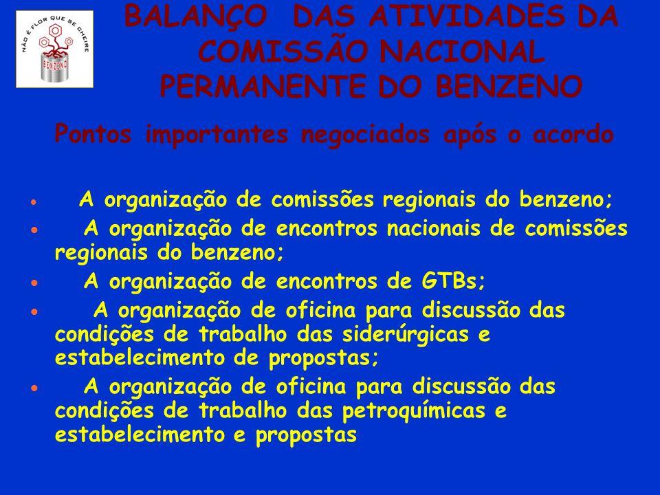 BALANÇO DAS ATIVIDADES DA COMISSÃO NACIONAL PERMANENTE DO BENZENO Pontos importantes negociados após o acordo A organização de comissões regionais do