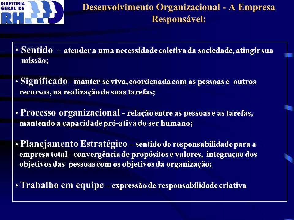 Desenvolvimento Organizacional - A Empresa Responsável: Sentido - atender a uma necessidade coletiva da sociedade, atingir sua missão; Significado - m