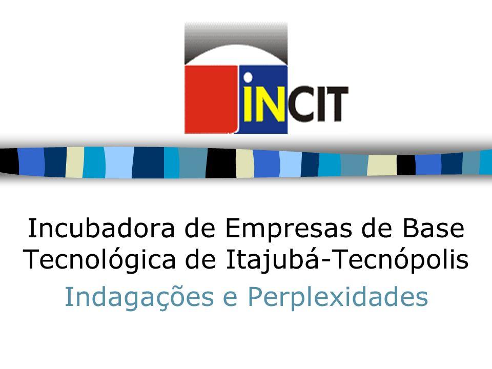 Incubadora de Empresas de Base Tecnológica de Itajubá-Tecnópolis Indagações e Perplexidades