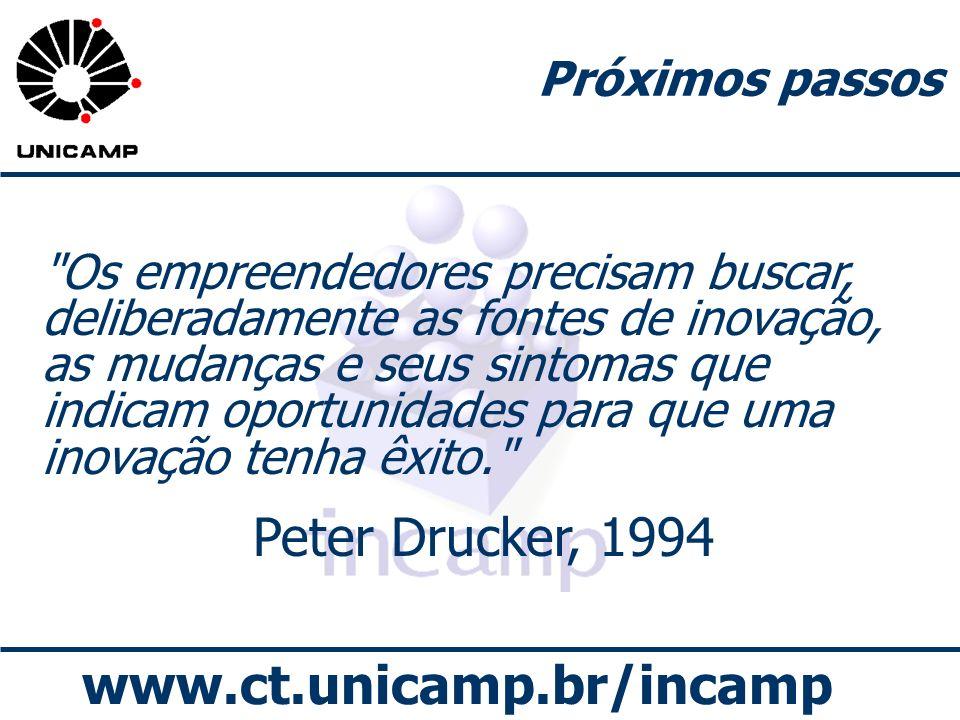 www.ct.unicamp.br/incamp Próximos passos