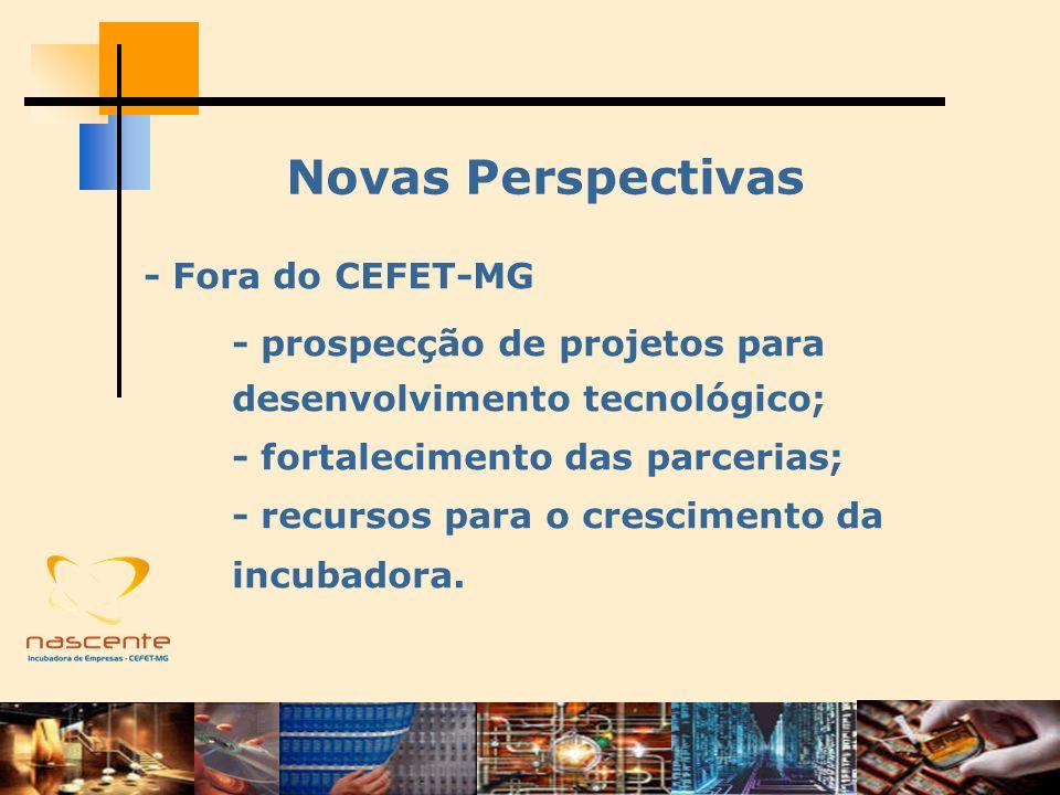 Novas Perspectivas - Fora do CEFET-MG - prospecção de projetos para desenvolvimento tecnológico; - fortalecimento das parcerias; - recursos para o cre