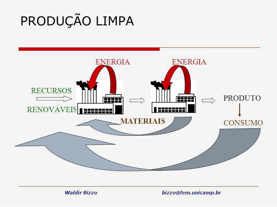 Waldir Bizzo bizzo@fem.unicamp.br PRODUÇÃO LIMPA RECURSOS RENOVÁVEIS ENERGIA PRODUTO CONSUMO MATERIAIS
