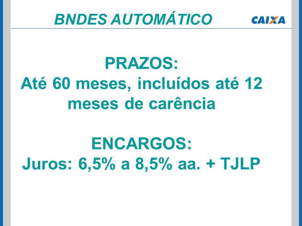 BNDES AUTOMÁTICO PRAZOS: Até 60 meses, incluídos até 12 meses de carência ENCARGOS: Juros: 6,5% a 8,5% aa. + TJLP
