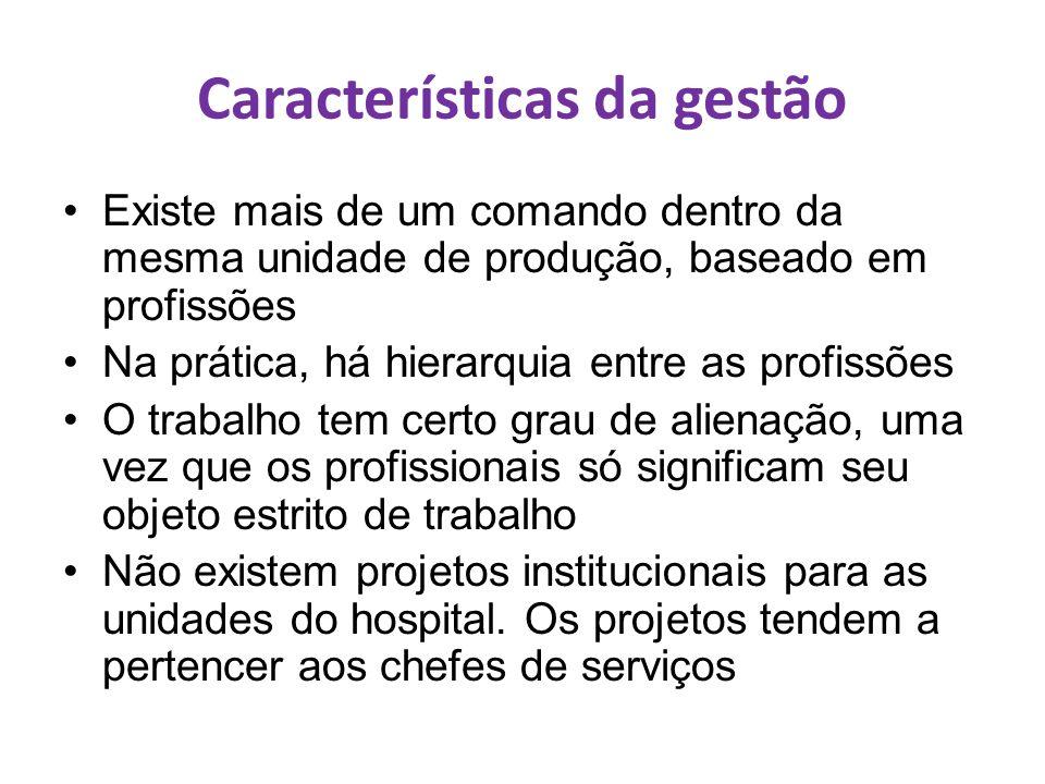 Características da gestão Existe mais de um comando dentro da mesma unidade de produção, baseado em profissões Na prática, há hierarquia entre as prof
