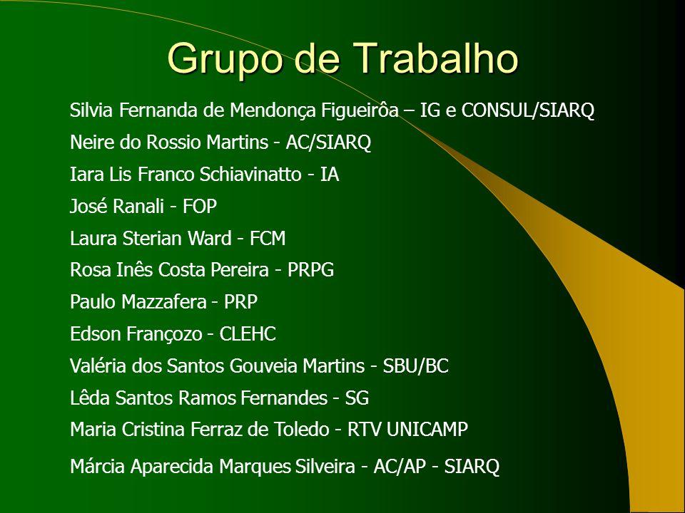 Grupo de Trabalho Silvia Fernanda de Mendonça Figueirôa – IG e CONSUL/SIARQ Neire do Rossio Martins - AC/SIARQ Iara Lis Franco Schiavinatto - IA José