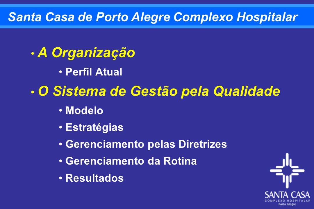 Planejamento Estratégico 2001-2005 Evolução do Perfil Epidemiológico do Rio Grande do Sul CLIENTES E SOCIEDADE