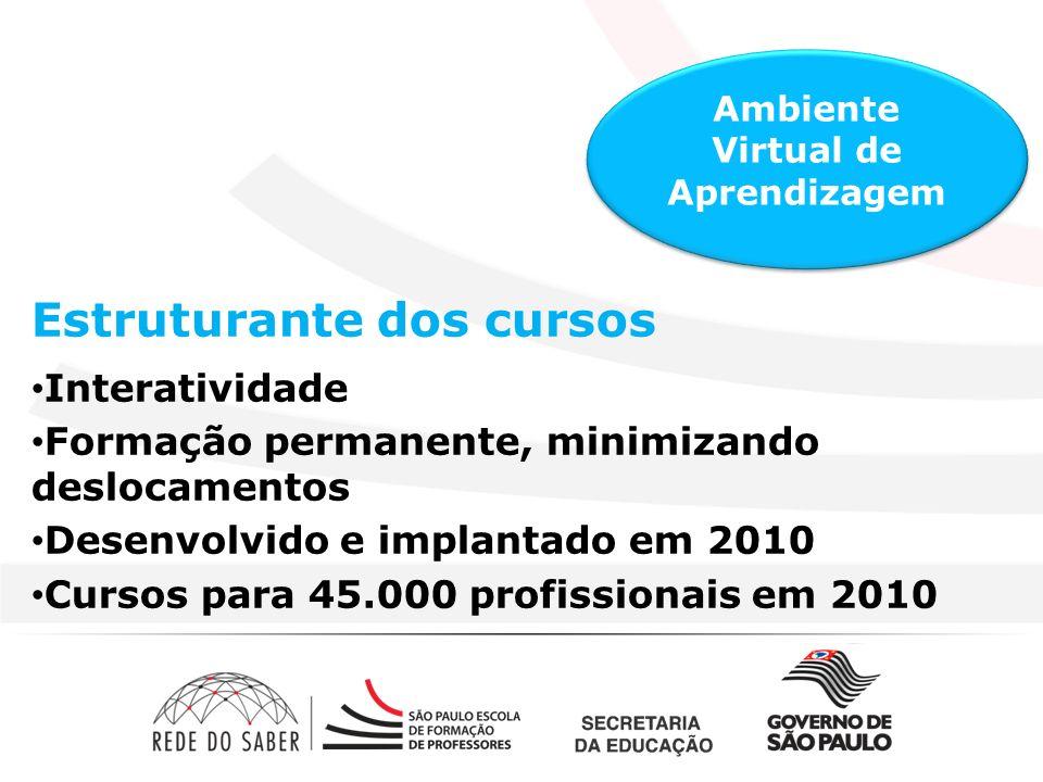 Estruturante dos cursos Interatividade Formação permanente, minimizando deslocamentos Desenvolvido e implantado em 2010 Cursos para 45.000 profissionais em 2010 Ambiente Virtual de Aprendizagem