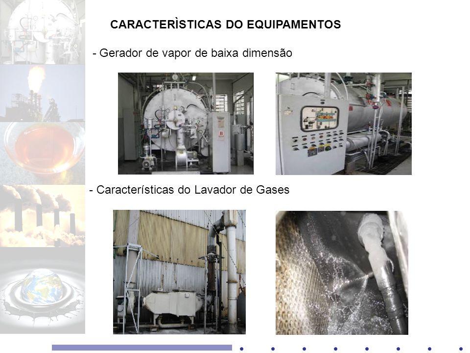 CARACTERÌSTICAS DO EQUIPAMENTOS - Gerador de vapor de baixa dimensão - Características do Lavador de Gases
