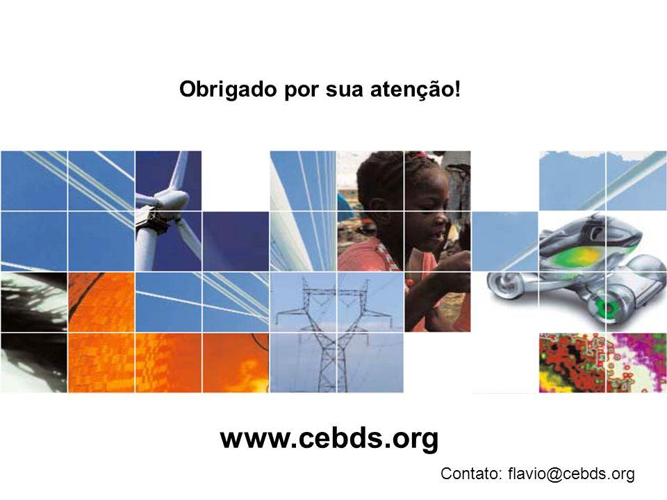 Obrigado por sua atenção! Contato: flavio@cebds.org www.cebds.org