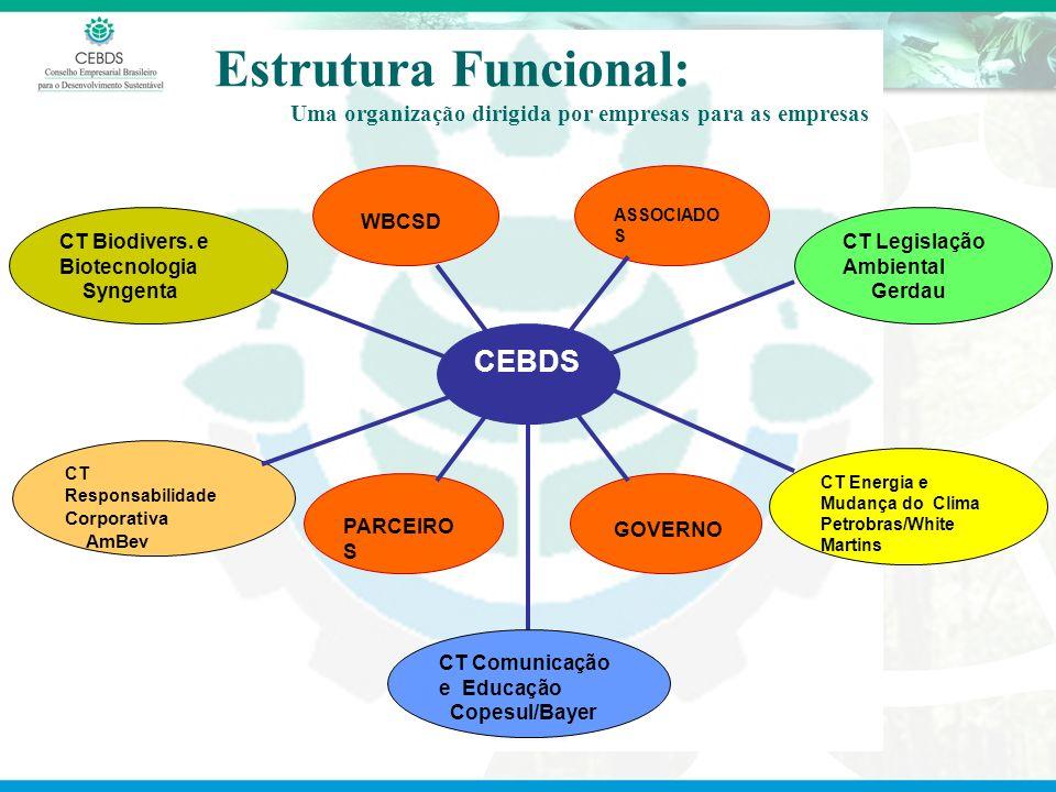 Estrutura Funcional: Uma organização dirigida por empresas para as empresas CT Biodivers. e Biotecnologia Syngenta CT Responsabilidade Corporativa AmB