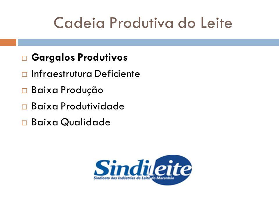 Cadeia Produtiva do Leite Gargalos Produtivos Infraestrutura Deficiente Baixa Produção Baixa Produtividade Baixa Qualidade