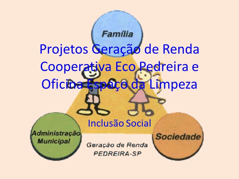 Introdução Implantar Oficinas de Geração de renda Buscar alternativas saudáveis para melhorar orçamento doméstico Atender integralmente famílias em vulnerabilidade social Preservar o Meio Ambiente