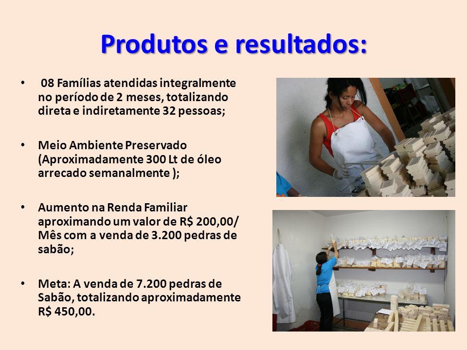 Produtos e resultados: 08 Famílias atendidas integralmente no período de 2 meses, totalizando direta e indiretamente 32 pessoas; Meio Ambiente Preserv