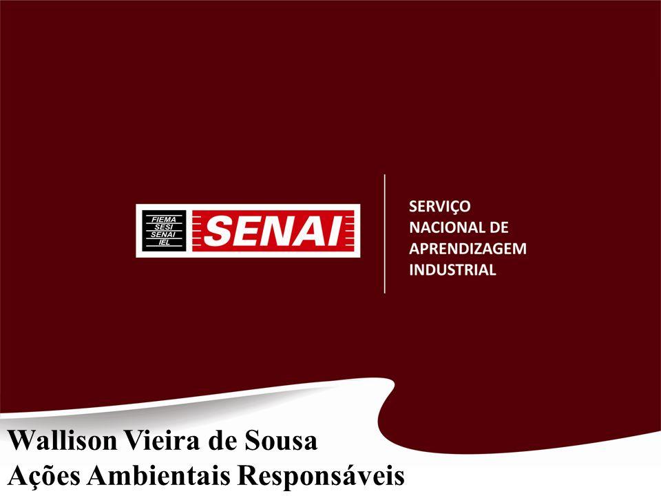 Wallison Vieira de Sousa Ações Ambientais Responsáveis