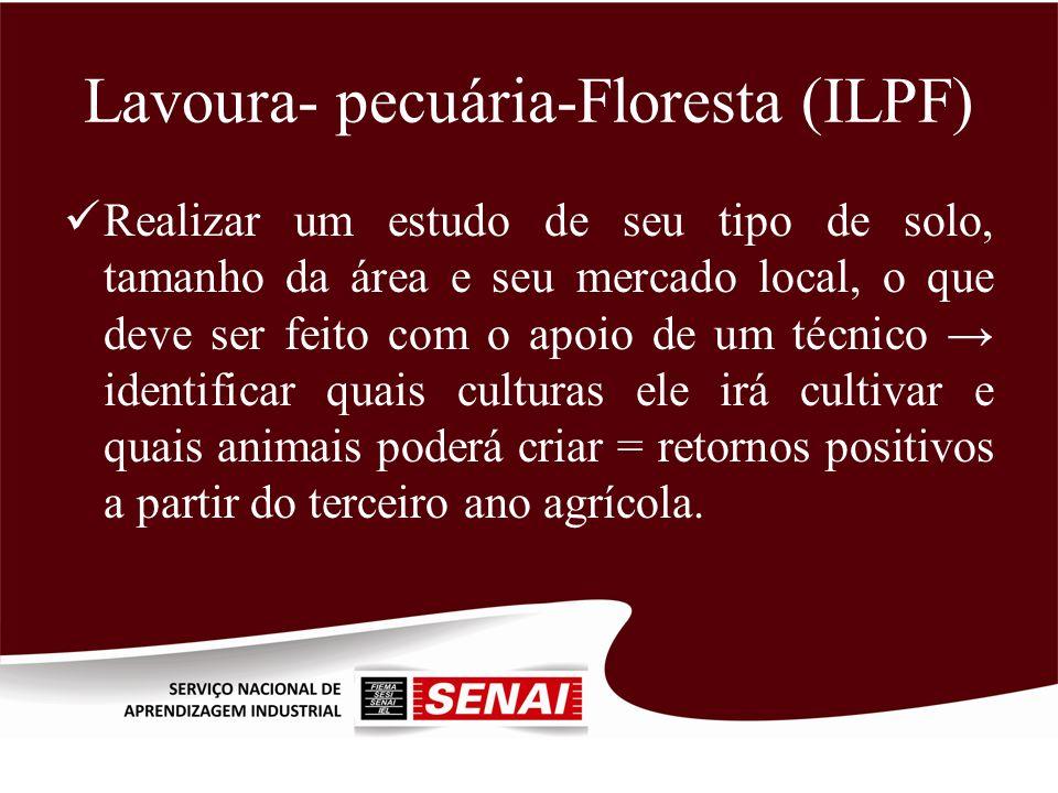 Lavoura- pecuária-Floresta (ILPF) Realizar um estudo de seu tipo de solo, tamanho da área e seu mercado local, o que deve ser feito com o apoio de um