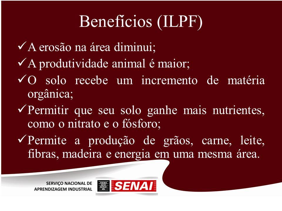Benefícios (ILPF) A erosão na área diminui; A produtividade animal é maior; O solo recebe um incremento de matéria orgânica; Permitir que seu solo gan