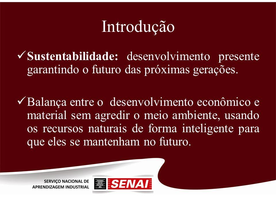 Introdução Sustentabilidade: desenvolvimento presente garantindo o futuro das próximas gerações. Balança entre o desenvolvimento econômico e material