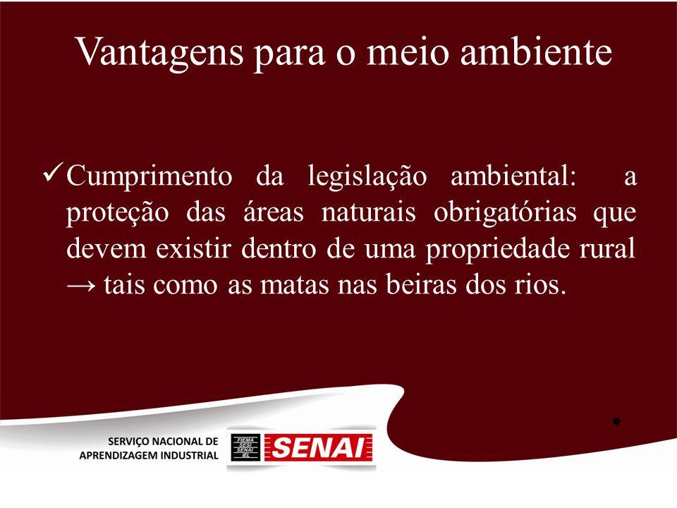 Vantagens para o meio ambiente Cumprimento da legislação ambiental: a proteção das áreas naturais obrigatórias que devem existir dentro de uma proprie