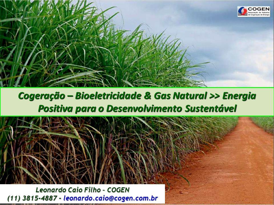 Cogeração – Bioeletricidade & Gas Natural >> Energia Positiva para o Desenvolvimento Sustentável Leonardo Caio Filho – COGEN (11) 3815-4887 - leonardo