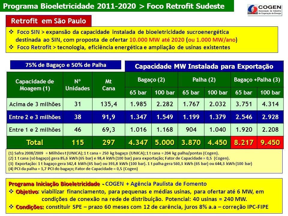 (1) Safra 2008/2009 = Milhões t (UNICA); 1 t cana = 250 kg bagaço (UNICA); 1 t cana = 204 kg palha/pontas (Cogen). (2) 1 t cana (só bagaço) gera 85,6