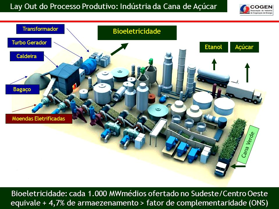 Cana Verde Moendas Eletrificadas Etanol Bagaço Caldeira Turbo Gerador Transformador Açúcar Bioeletricidade Lay Out do Processo Produtivo: Indústria da