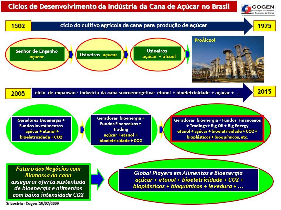 Bioeletricidade > Comercializada nos Leilões de 2005 a 2010 MW Instalado Acumulado 270 4.612 458 691 1.233 3.618 3.732 3.779 3.869 Central Operação: Açúcar + Etanol + Bioeletricidade