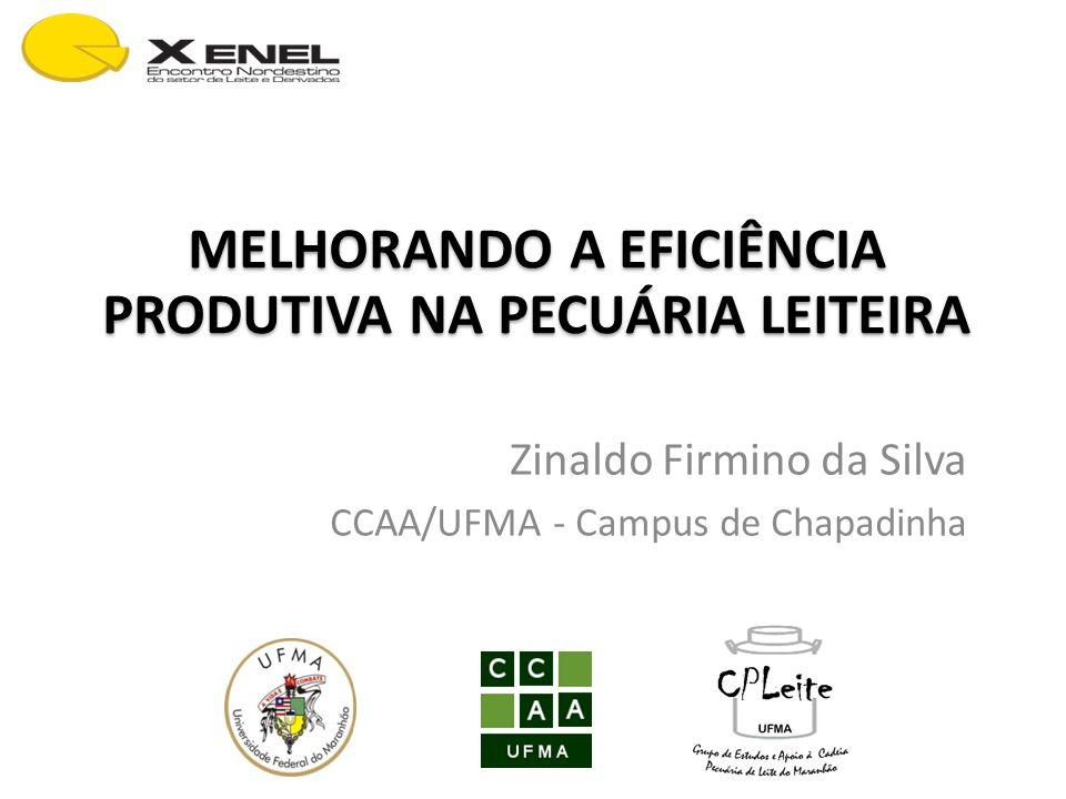 MELHORANDO A EFICIÊNCIA PRODUTIVA NA PECUÁRIA LEITEIRA Zinaldo Firmino da Silva CCAA/UFMA - Campus de Chapadinha