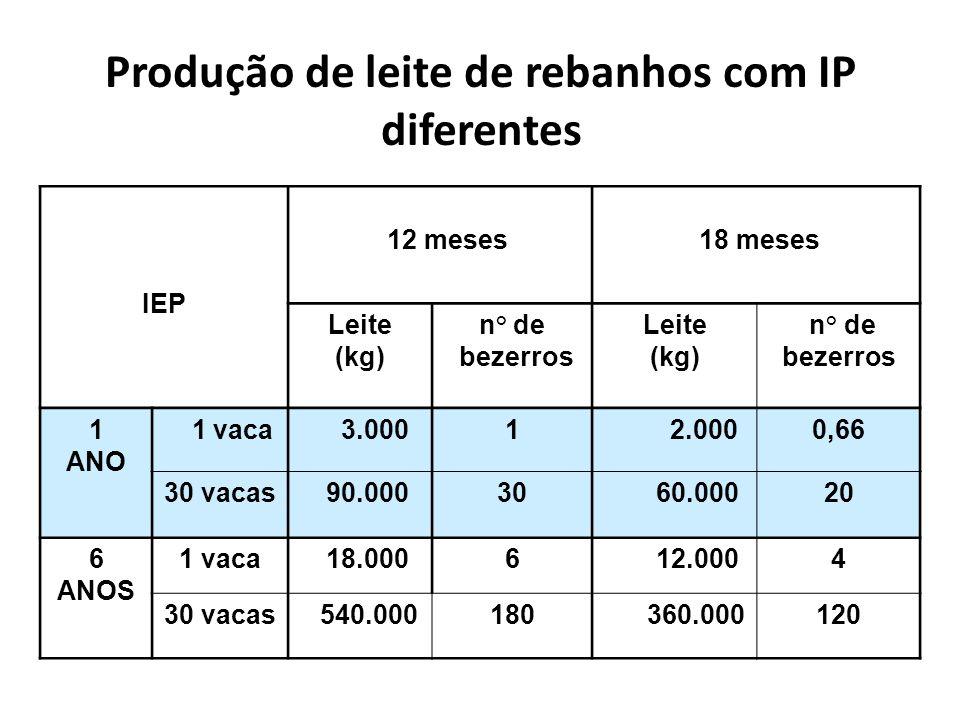 Produção de leite de rebanhos com IP diferentes IEP 12 meses 18 meses Leite (kg) n° de bezerros Leite (kg) n° de bezerros 1 ANO 1 vaca 3.0001 2.0000,66 30 vacas 90.00030 60.00020 6 ANOS 1 vaca 18.0006 12.0004 30 vacas 540.000180 360.000120