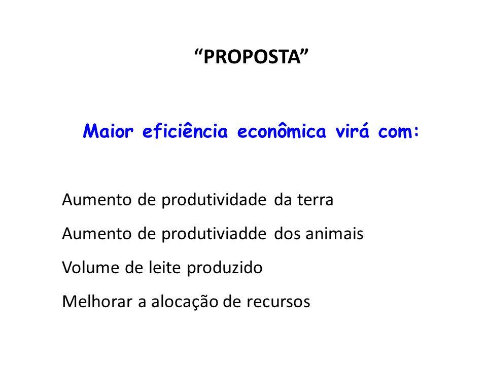 PROPOSTA Maior eficiência econômica virá com: Aumento de produtividade da terra Aumento de produtiviadde dos animais Volume de leite produzido Melhorar a alocação de recursos
