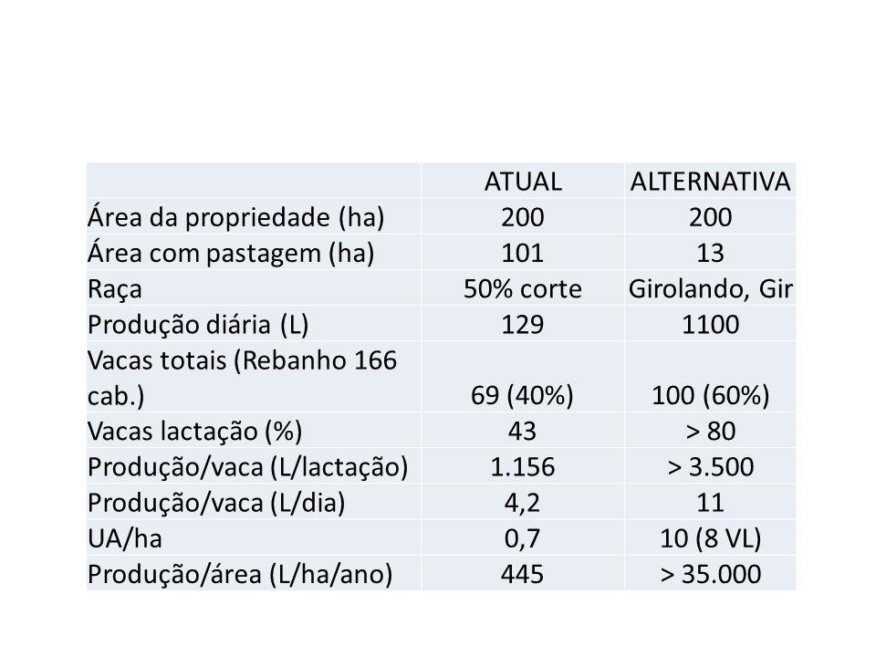 ATUALALTERNATIVA Área da propriedade (ha)200 Área com pastagem (ha)10113 Raça50% corteGirolando, Gir Produção diária (L)1291100 Vacas totais (Rebanho 166 cab.)69 (40%)100 (60%) Vacas lactação (%)43> 80 Produção/vaca (L/lactação)1.156> 3.500 Produção/vaca (L/dia)4,211 UA/ha0,710 (8 VL) Produção/área (L/ha/ano)445> 35.000