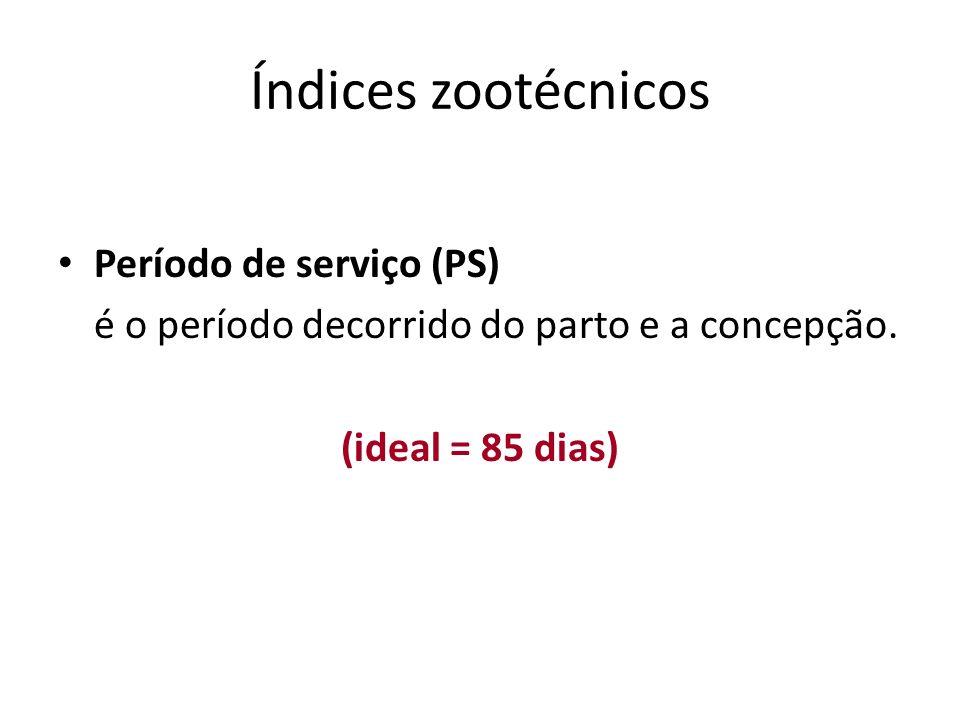 Índices zootécnicos Período de serviço (PS) é o período decorrido do parto e a concepção. (ideal = 85 dias)