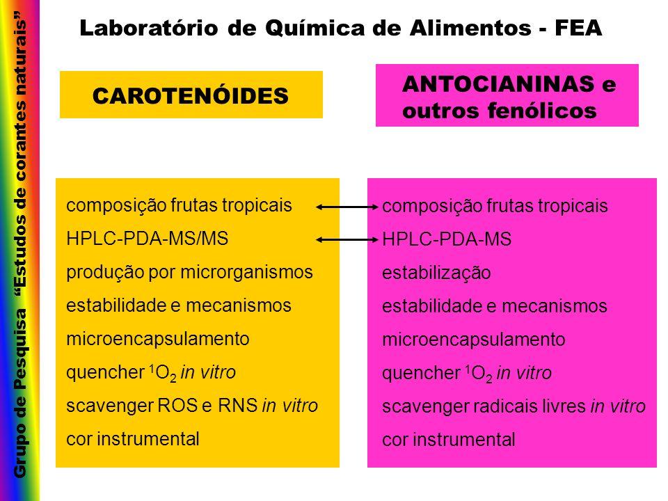 CAROTENÓIDES ANTOCIANINAS e outros fenólicos composição frutas tropicais HPLC-PDA-MS/MS produção por microrganismos estabilidade e mecanismos microenc